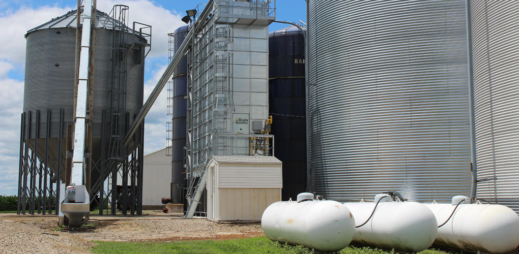 Grain Systems